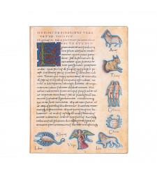 Записник Paperblanks Астрономіка - De Sideribus Tractatus / Flexi великий Лінійка
